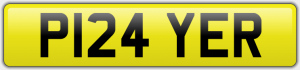 P124 YER NUMBER PLATE