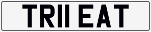 Treat cherished number plate TR11 EAT